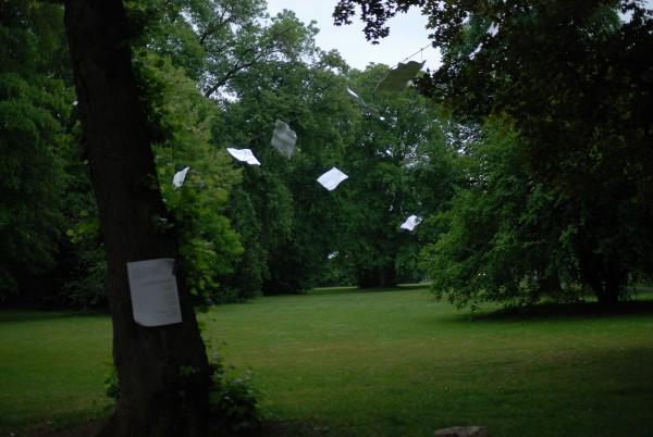 https://timhelbig.de/files/gimgs/th-75_Liszt2011(park).jpg